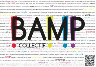https://collectifbamp.files.wordpress.com/2014/01/fondfinal.png?w=315&h=222
