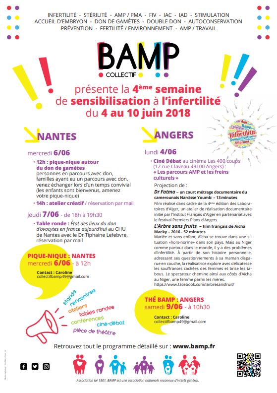 SSI 2018 – Nantes etAngers